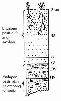 Profil Tanah Gunung Wingko